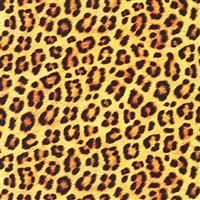 "108"" Backing- Animal Kingdom- Leopard- SATEEN"