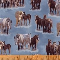 Happy Trails- Horses- Blue