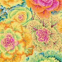 Brassica- Yellow